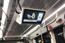видеоэкраны в транспорте